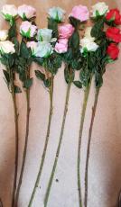 Rosen 3 Blüten