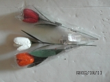 Tulpen metall